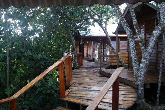 ovava-tree-lodge